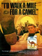Camel turkish and domestic blend cigarettes