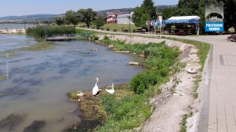 Moldova Noua, faleza